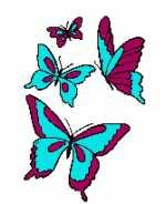 4 Butterflies 167x205