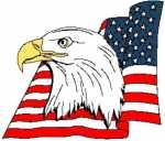 American Eagle Head With Flag 294x251