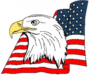 American Eagle Head With Flag 294x251