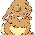 Cute Bunny 225x300_mini