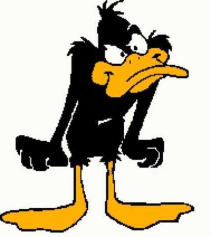 Daffy Duck 1 189x212_mini