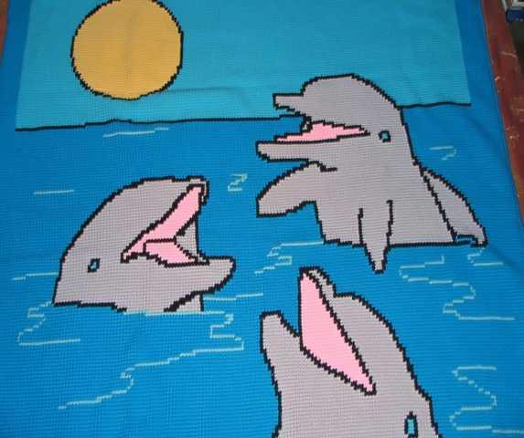 Dolphin Blanket 1