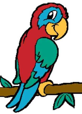 Parrot-1-186x260