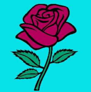 Simple Rose 277x282_mini