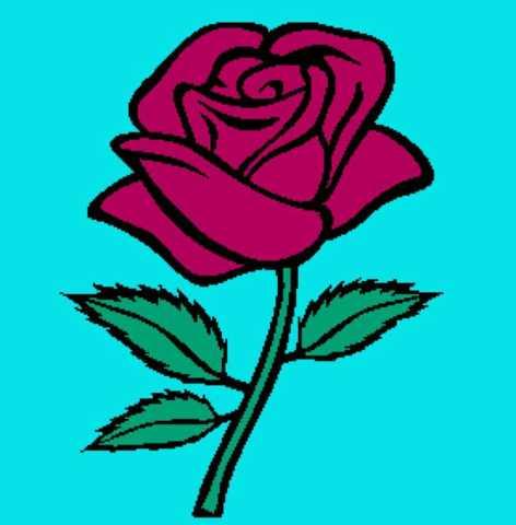 Simple Rose 277x282_mini