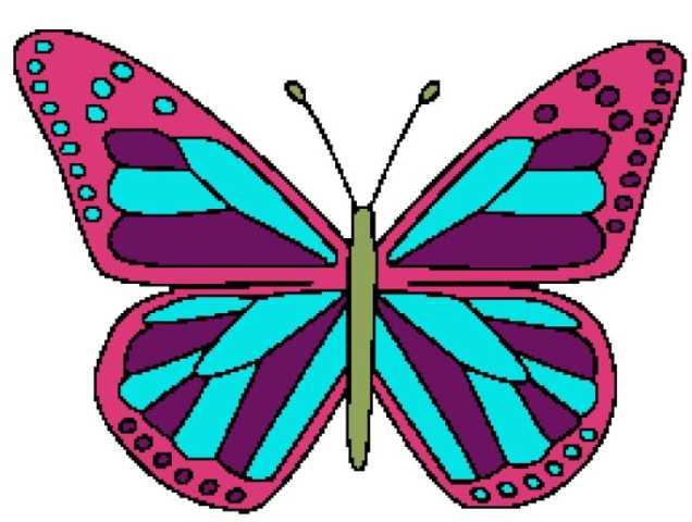 Butterfly 2 258x195