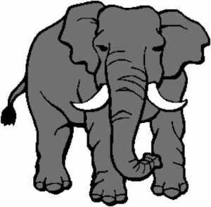 Elephant 2 272x266