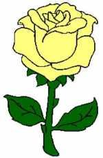 Rose 2 188x286