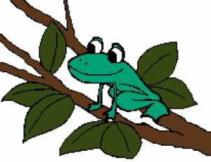 Frog 3 206x159