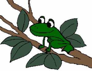 Frog 3 235x182