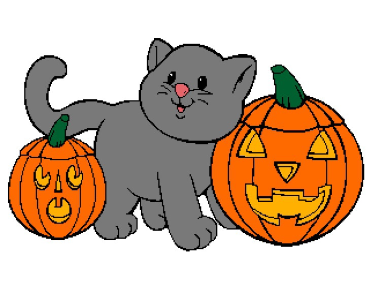 Kitten with Pumpkin 320x250