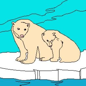 2 Polar Bears 234x302