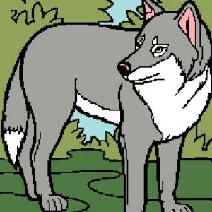 Wolf 1 187x250