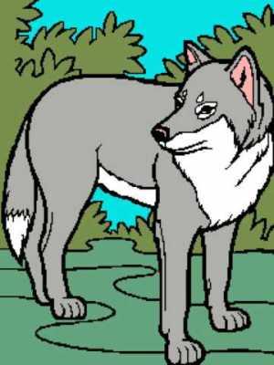 Wolf 1 218x291