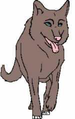 Wolf 2 167x266