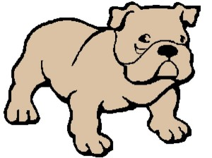 Dog 1 300x225