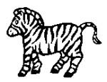 Cute Zebra 1 162x126