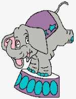 Circus Elephant 162x213