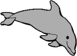 Dolphin 1 175x129