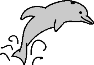 Dolphin 2 234x164