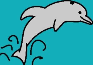 Dolphin 2 280x197