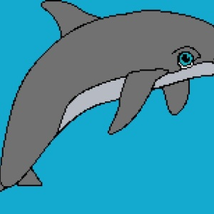 Dolphin 3 205x154