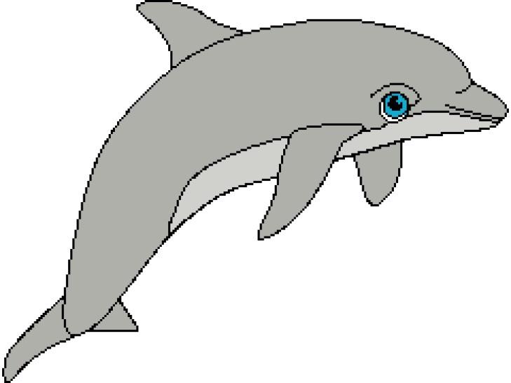 Dolphin 3 240x180