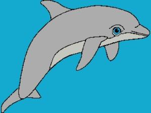 Dolphin 3 288x216