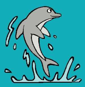 Dolphin 4 277x282